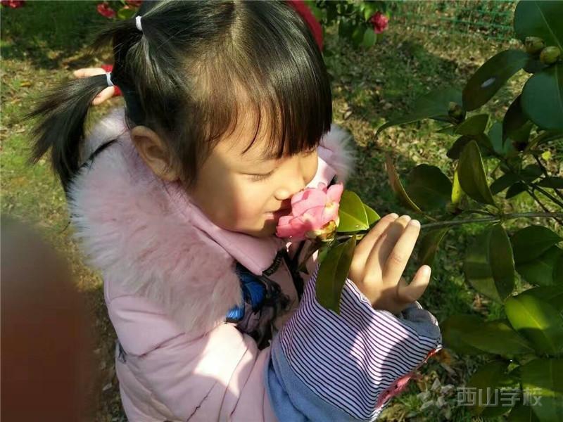 小朋友流鼻血,仰头、棉花止血都不对!正确姿势学起来 --江西省西山学校幼儿园