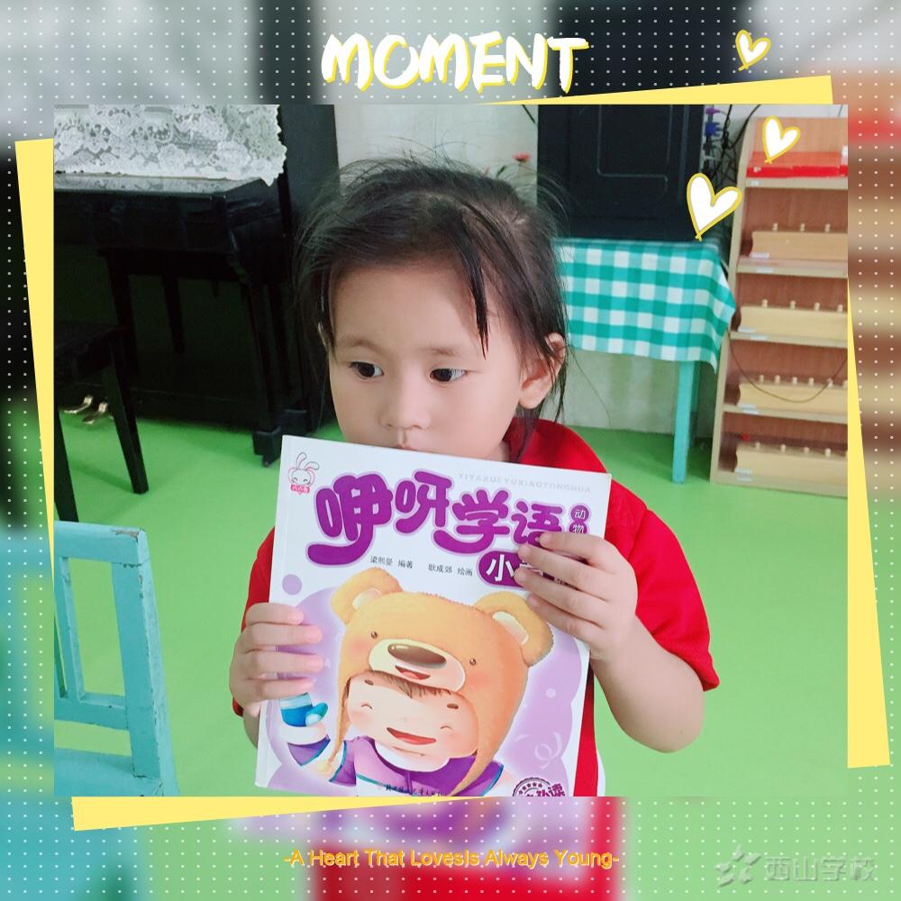 我喜爱的故事书——福清西山学校幼儿园蒙芽一班